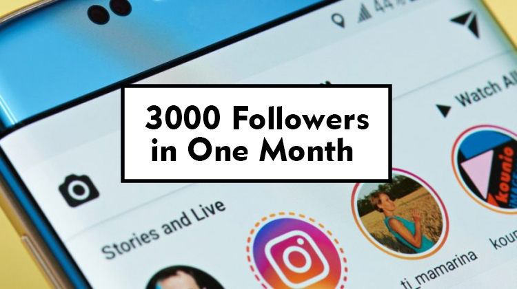 3000 Followers in One Month
